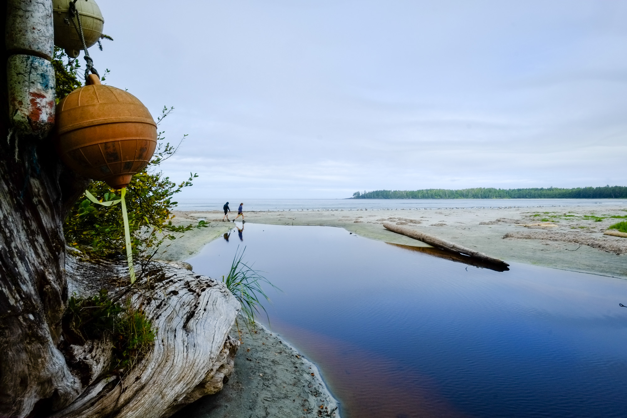 A creek reflects two hikers on Nels Bight, Cape Scott.