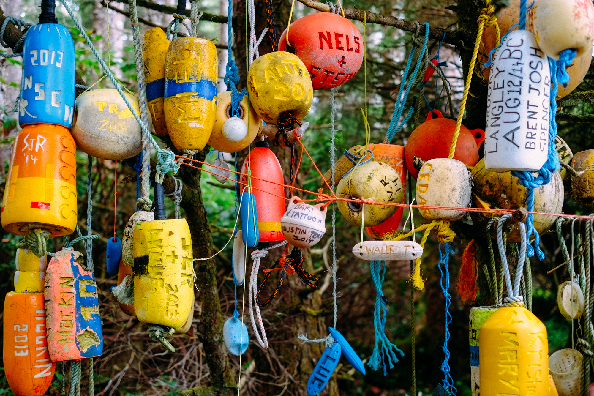 Flotsam is personaized and hangs as a trail marker in Cape Scott.